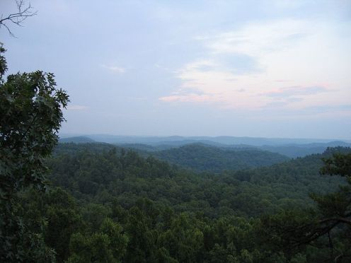 The Daniel Boone National Forest